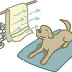 ペットの暑さ対策 熱中症の時は速やかな水分補給と受診を